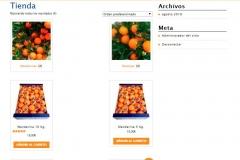 naranjas-los-valencianos